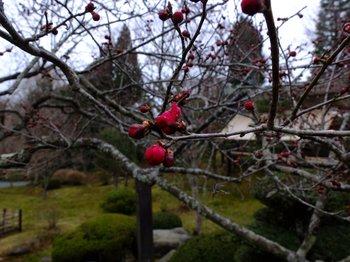 塩竈神社2.jpg