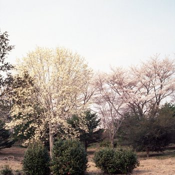 太陽の村5.jpg