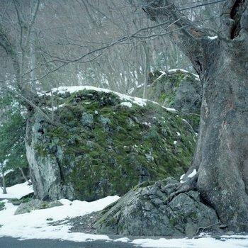 材木岩1.jpg