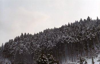 鳴子雪1.jpg